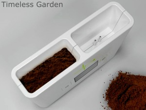 Timeless Garden