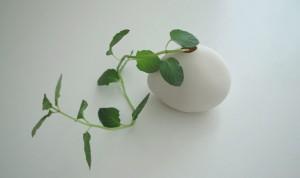 mini bloempotje
