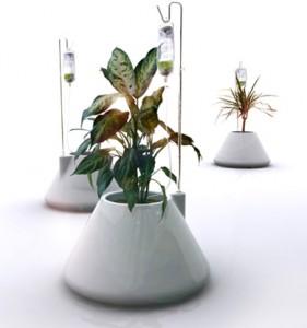 ronde plantenbak