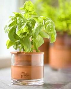 Plantenbak die zichzelf water geeft