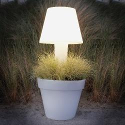 Plantenbak met licht