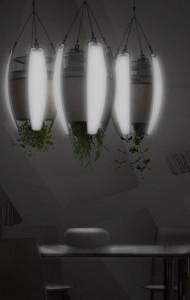 livinglight verlichte plantenbak
