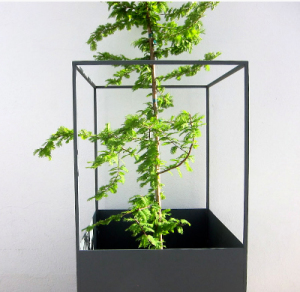 skylineplanters  plantenbak