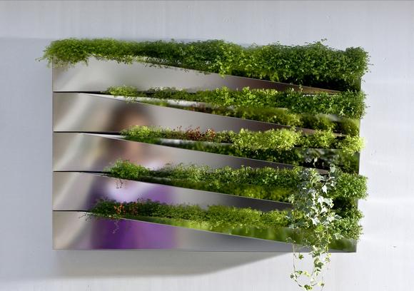 hydroplantenbak