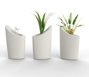 lotus plantenbak