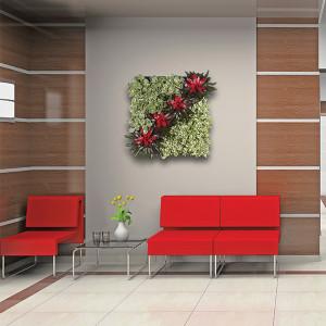 plant portret
