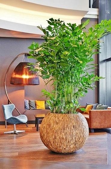 Mooie Bloempotten Voor Binnen.Originele Plantenbakken Laat Je Inspireren Met Originele